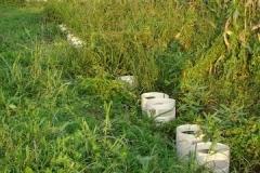Efficacia larvicidi su zanzare in campo
