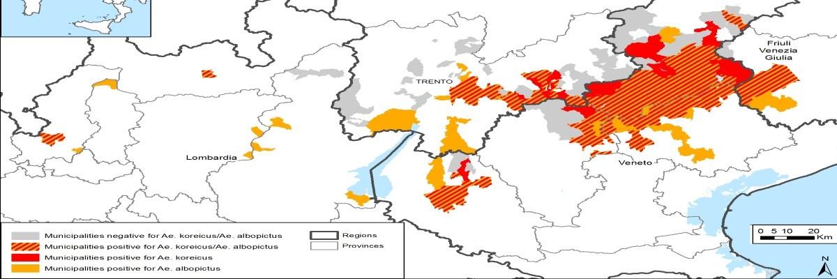 La diffusione di Aedes Koreicus